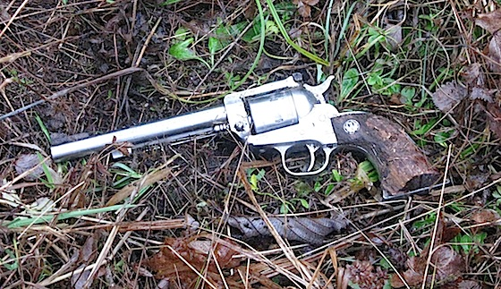 Ruger Single-Six recovered after 8 years in the woods.