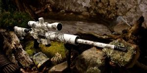 AR-15 in 17HMR