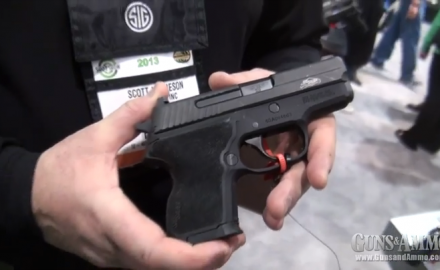When SIG Sauer rolled out its P224 at the 2012 SHOT Show, the new pistol was available in
