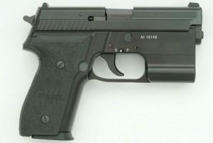 SIG-Sauer-P229-EPLS_002