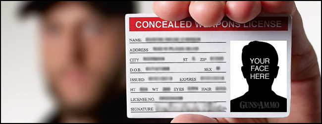 Best States for Concealed Carry in 2013