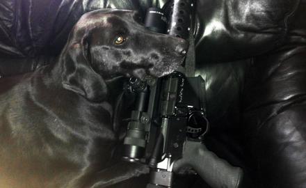 A Dogs Best Friend - Guns & Ammo Caption Contest