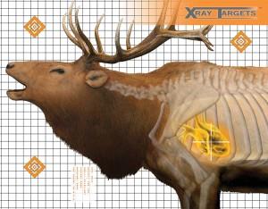 XRay_Elk_target