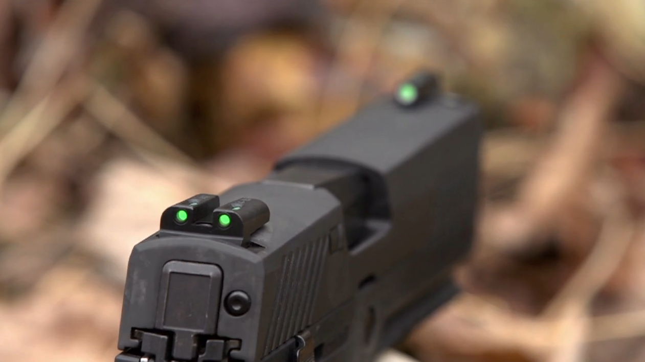 TruGlo TFX Sight