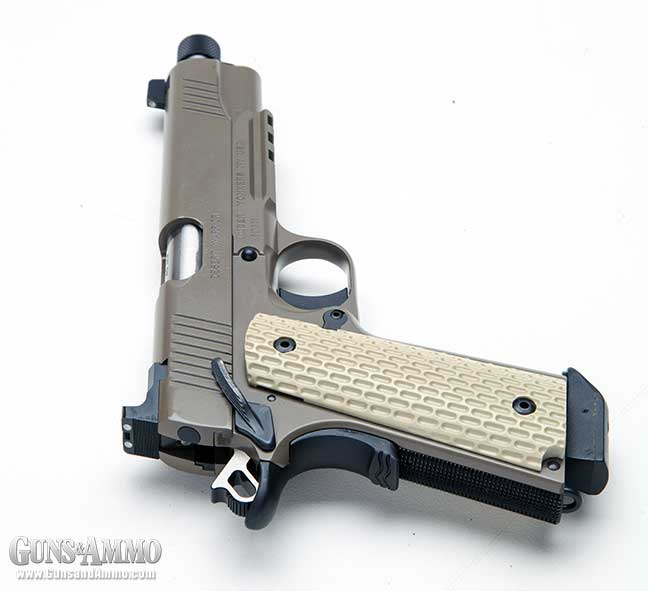review-kimber-desert-warrior-tfs-5