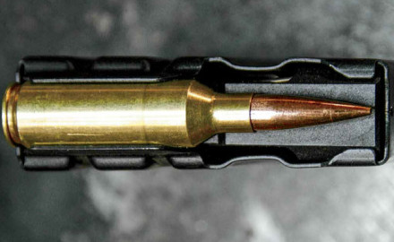 By Caylen Wojcik