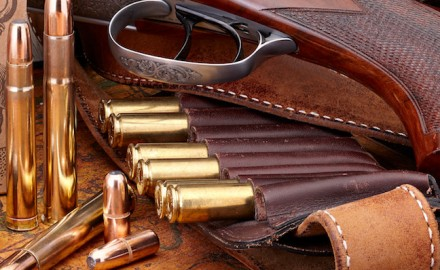 2018 firearm cartridges
