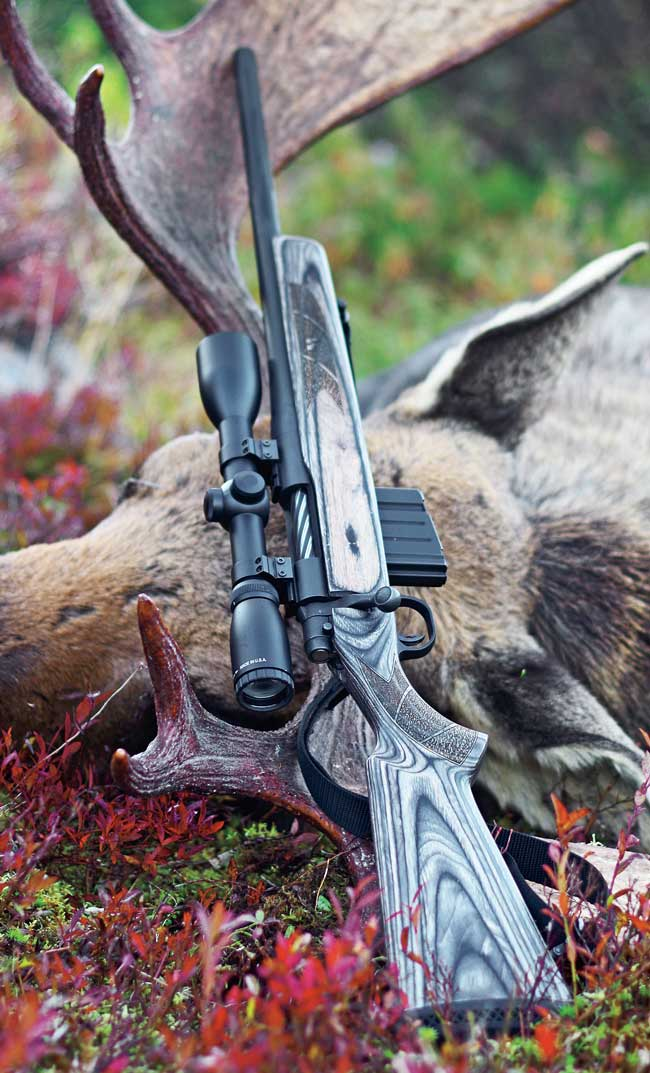 Of Moose and Memories: Hunting Newfoundland with a Mossberg's MVP in .308 Win.