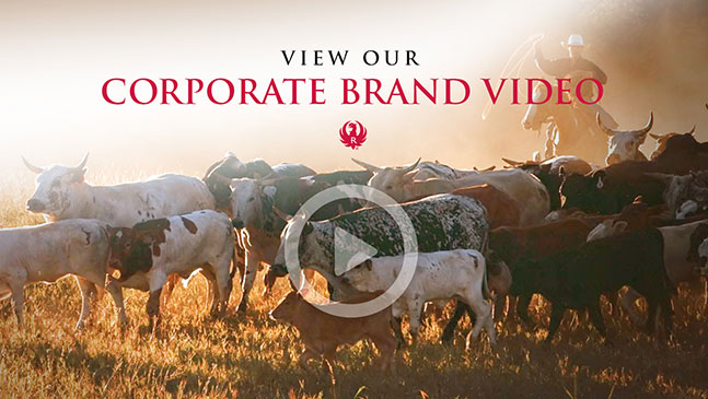 RugerCorporateVideo