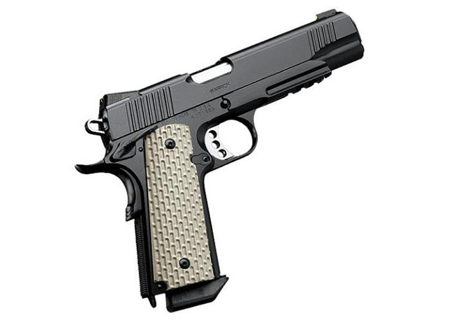 //www.gunsandammo.com/files/are-1911-rail-guns-better-than-the-original/kimber_warrior.jpg