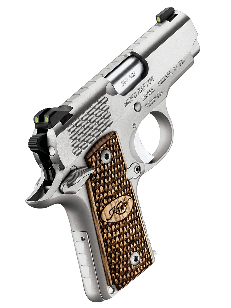 //www.gunsandammo.com/files/first-look-new-guns-from-kimber-in-2015/kimber_micro-raptor-stailess.jpg