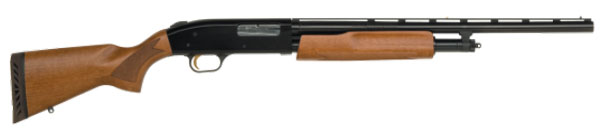//www.gunsandammo.com/files/products-for-young-shooters/mossberg-model-505-youth-all-purpose.jpg