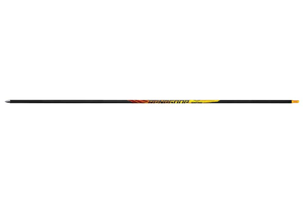 //www.bowhunter.com/files/10-accuracy-improving-arrows/black-eagle-renegade-lg.jpg