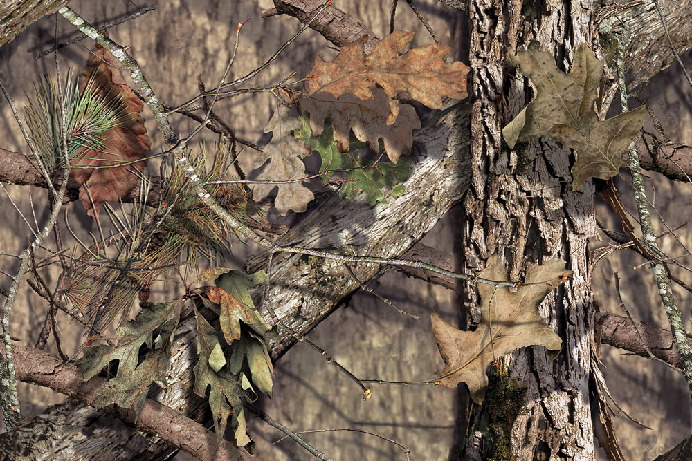 //www.bowhunter.com/files/10-products-to-watch-for-from-the-2015-ata-show/best_in_mossy_10.jpg