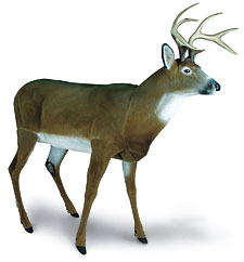 Bowhunting Deer Decoy 411