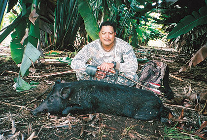 Hawaii's feral pigs are a problem for farmers and a blessing for bowhunters.
