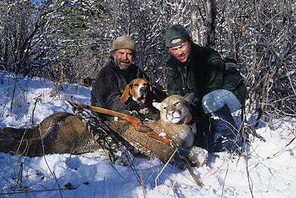 Pursuing mountain lions with archery tackle isn't always easy, but this success story was meant to be.
