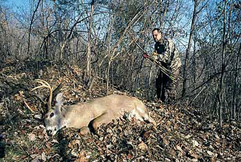 Are too many hunters and too few deer really cause for despair? Not when you use your head.