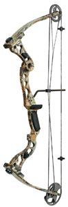 Equipment Notes: youth/short-draw bows