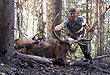 When passion for hunting burns deep in your heart, you'll go to any lengths to take your first bull elk.