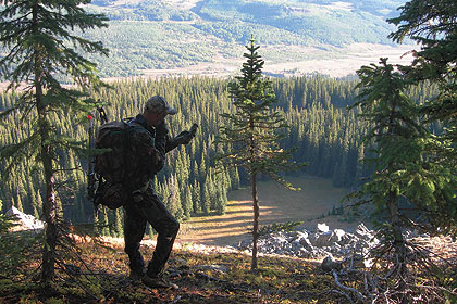 Do-it-yourself, public-land elk hunting can still pay off big -- if you have a plan for cashing in.