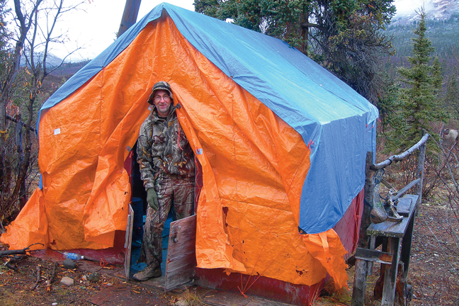 moose-attack-camp