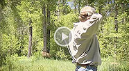 VIDEO: Shooting Your Bow in the Wind