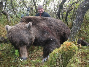 Brown-bear_001
