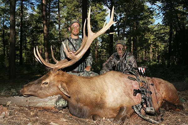 Nothing in the outdoors compares to the scream of a rutting bull elk as it echoes through the