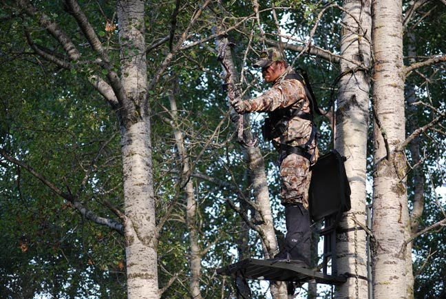 Image result for bow hunter in tree stand