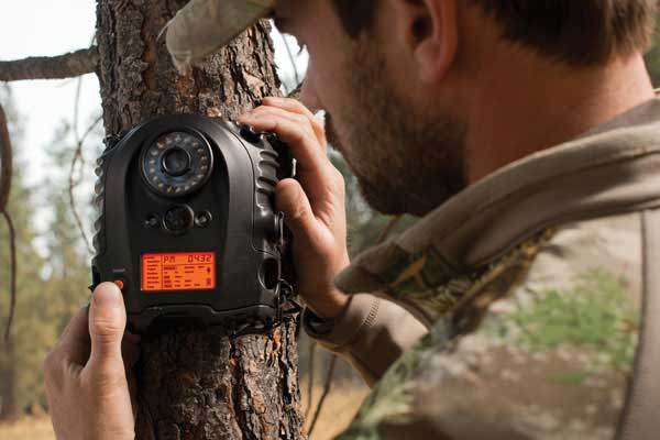 Great New Trail Cameras for 2013