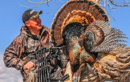 10 Best Turkey Destinations for Bowhunters