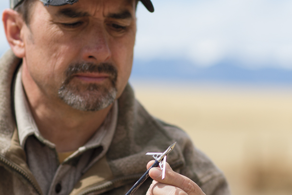 Deadly New Broadheads for 2014