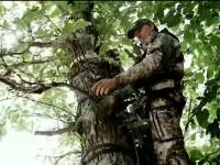 mot_treestand_f