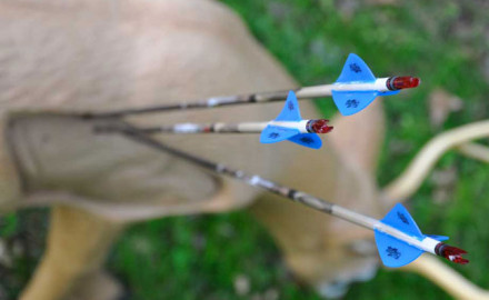 practice-archery-at-odd-angles