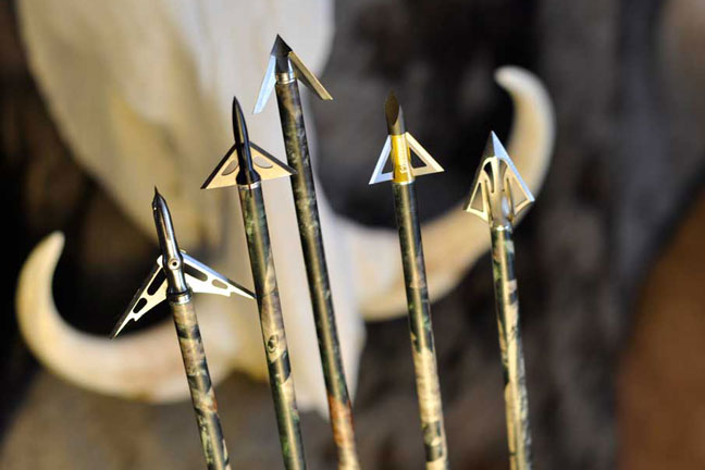 shoot-your-real-broadheads-when-practicing-archery
