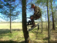 Climbing Tree Stand Options
