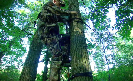BH 6 Tech Talk: Tree Stand Safety
