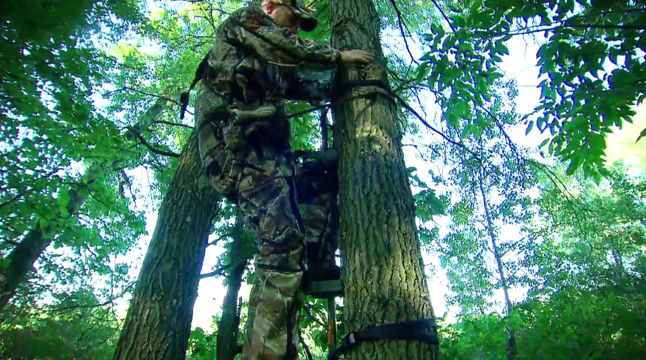 Tech Talk: Tree Stand Safety