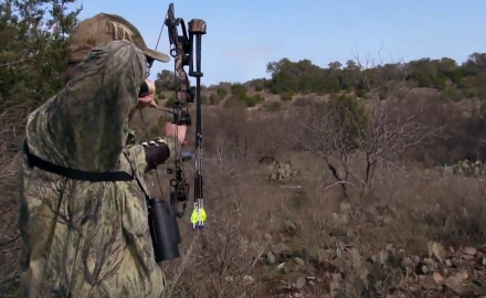 Curt Wells and Brian Fortenbaugh head to Texas Hill Country to chase hogs.