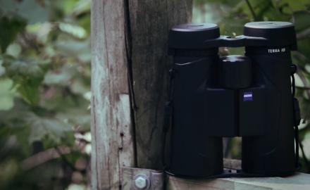 Strides in Value Binoculars