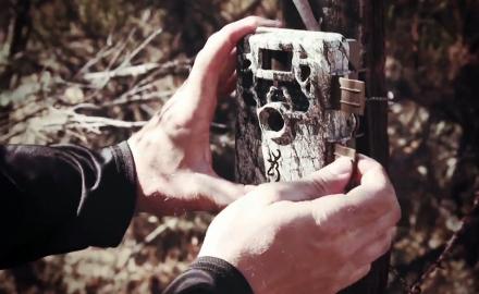 Tech Talk: Browning Trail Cameras