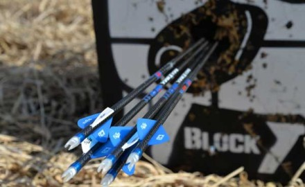 The difference between so-so arrows and top quality, precision-matched shafts is imperceptible to