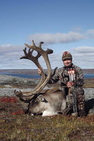 Caribou appeal to a lot of hunters, and for good reason.
