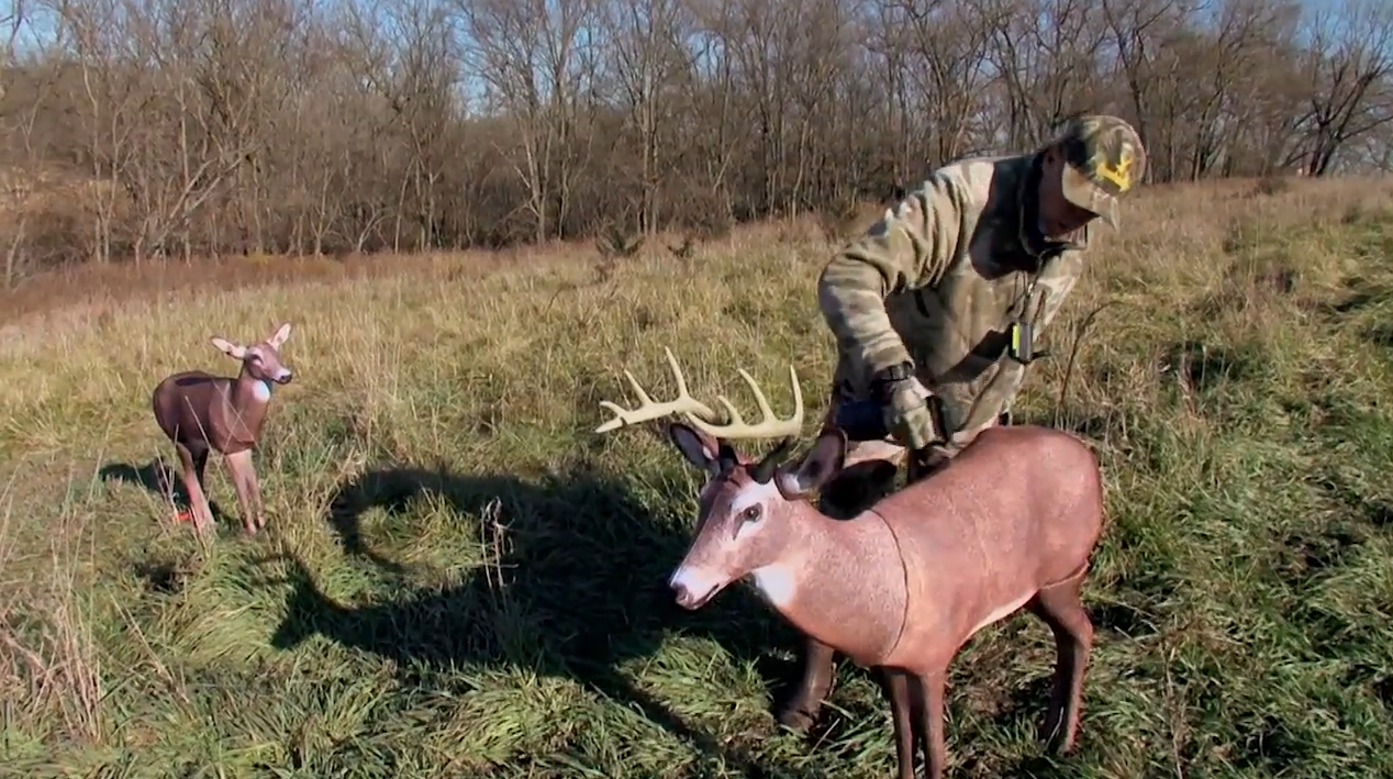 7 Rules for the Whitetail Rut