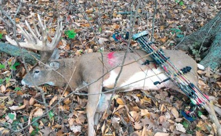Mark knew that this would be the largest buck he'd ever shot at, should he maintain his