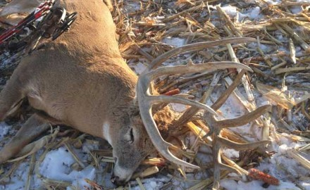This hometown South Dakota buck grew to become last year's biggest typical whitetail. My story of
