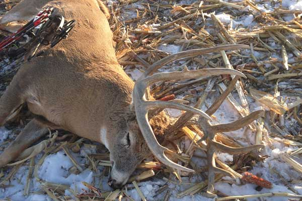 The Biggest Typical Buck of 2014