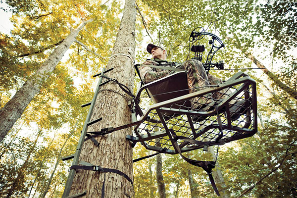 Shot Placement For Treestand Bowhunters