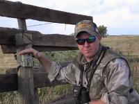 scouting for mule deer